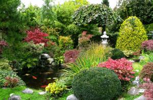 Japanischer Garten mit Teich und Goldfischen