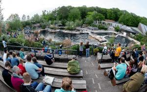Siegerehrung in der Delfinlagune im Tiergarten Nürnberg